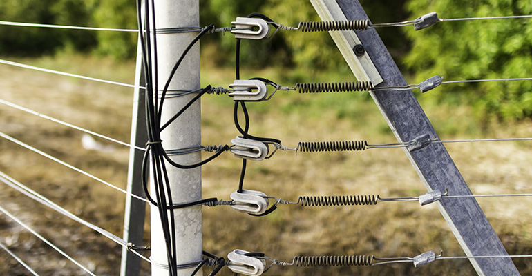 PROS and CONS of Electric Fences - Gold Coast